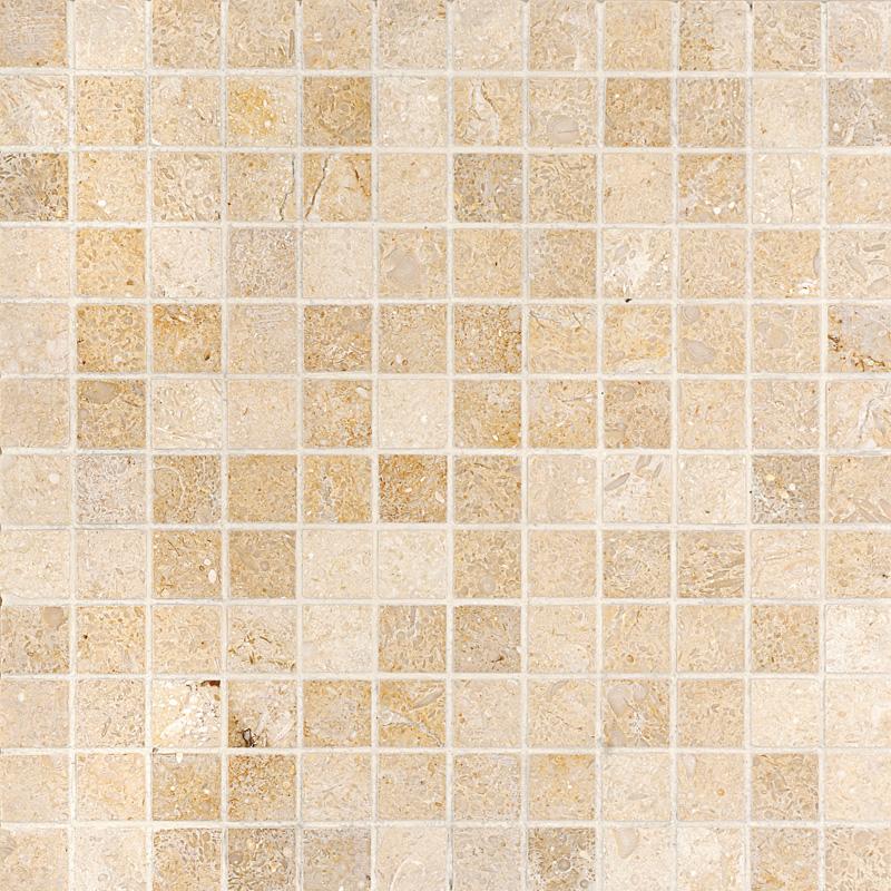 Seashell Honed 30,5x30,5 1x1 Limestone Mosaics